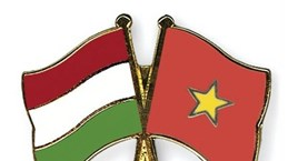 Get-together marks Vietnam, Hungary's National Days