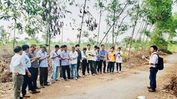 USAID project assists Thua Thien – Hue in forest management