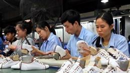 Vietnamese, Bangladeshi firms seek cooperation opportunities
