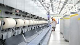 Da Lat-based plant ships 4 tonnes of sheep wool yarn to Japan
