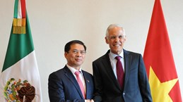 Vietnam, Mexico hold fifth political consultation