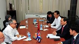 Vietnam, Cuba hold fifth political consultation