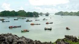 Hai Phong draws visitors to Cat Ba island
