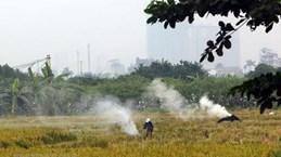 Hanoi seminar discusses ways to improve air quality