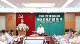 Inspection, supervision work helps uphold Party discipline, rules