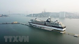 Ha Long city welcomes 7.9 million visitors in nine months