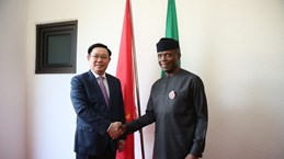 Deputy PM holds talks with Nigerian Vice President