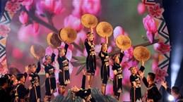 Sixth Vietnam–Laos–China 'con' festival wraps up