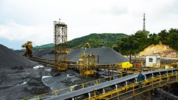 Vietnam increases coal, ore and mineral imports
