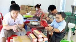 Da Nang AO/Dioxin victim association plans 10 bln VND in fundraising