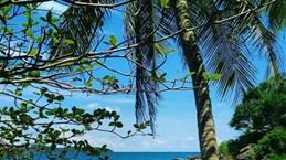 Hon Xuong island offers same beauty as Maldives