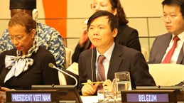 Vietnam ready to assist Afghanistan in peace building process: ambassador