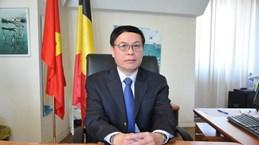Belgian firms updated on business opportunities in Vietnam