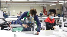 Vietnam looks to use EVFTA to boost exports to Netherlands
