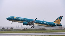 Vietnam Airlines, ACV suffer heavy losses due to COVID-19