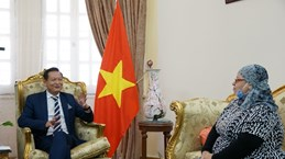 Vietnam's National Day celebrated in Egypt, South Africa