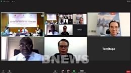 Vietnam, Nigeria hold B2B Networking Webinar on Fashion Products