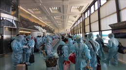 Over 340 Vietnamese citizens flown home from Taiwan