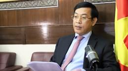 Vietnam, China's Hong Kong enjoy fruitful cooperation: Diplomat