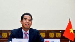 Vietnam, EU look to augment strategic cooperation
