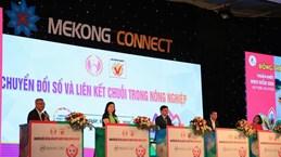 Mekong Delta promotes digital transformation in agriculture