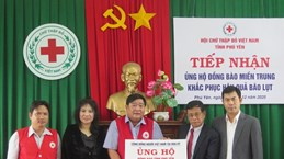 Vietnamese community in US supports flood-hit victims in Phu Yen