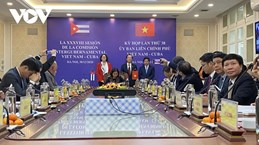 Vietnam, Cuba seek ways to raise trade to 500 million USD