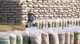 Vietnam imports Indian broken rice