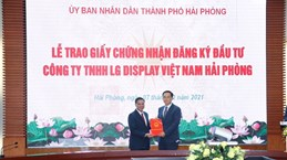 Hai Phong grants investment approval to LG Display's project