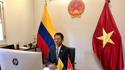 Vietnam wants to enhance ties with Colombia: diplomat