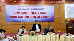 Friendship association works to foster Vietnam-China ties