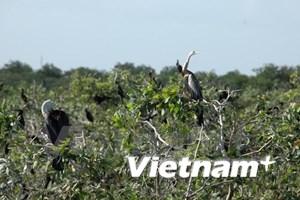 Cambodia has 4th Ramsar site