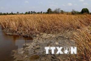 More activeness needed in Vietnam's disaster risk management