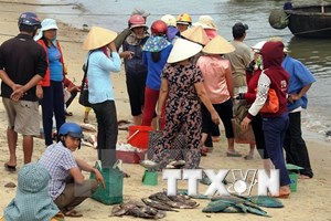 Formosa compensates for mass fish deaths in central provinces