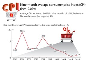 Nine-month average consumer price index (CPI) rises 2.07%