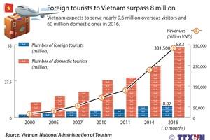 Foreign tourists to Vietnam surpass 8 million