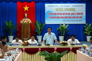 Mekong Delta must avoid subjectivity in climate change response