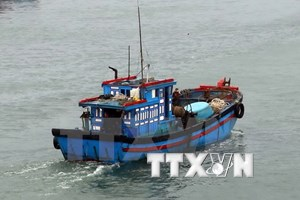 Vietnamese rep. offices work to protect nationals' legitimate rights