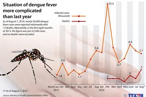 Dengue fever become more complicated