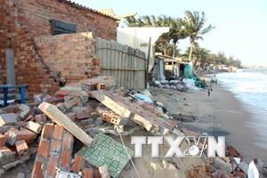 Tien Giang proactive to prevent landslides