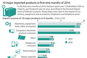 10 major imported products in first nine months of 2016