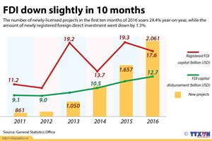 FDI down slightly in 10 months
