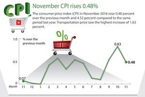 November's CPI see slight rise