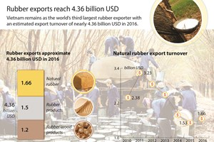 Rubber exports reach 4.36 billion USD