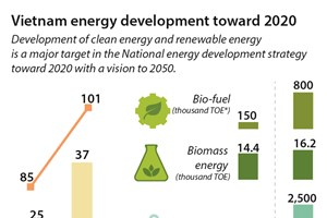 Vietnam energy development toward 2020