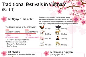 Traditional festivals in Vietnam