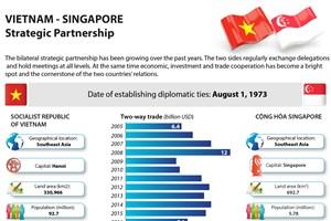 Vietnam – Singapore Strategic Partnership