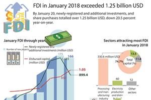 January FDI exceeds 1.25 billion USD
