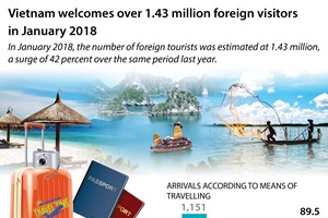 Vietnam welcomes over 1.43 million foreign visitors in January