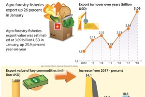 Agro-forestry-fisheries export up 26 percent in January